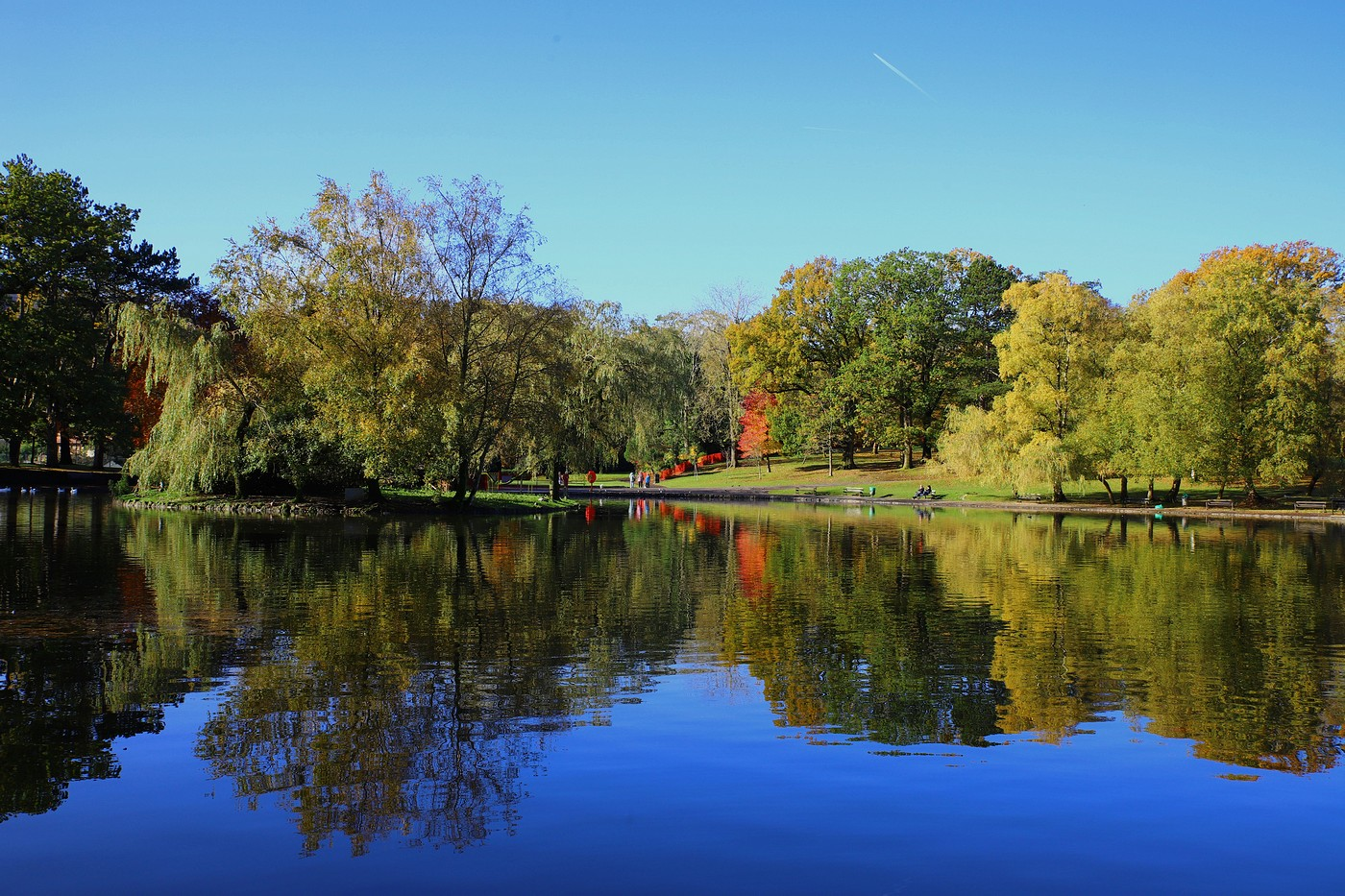 lake-by-wendy-donovan