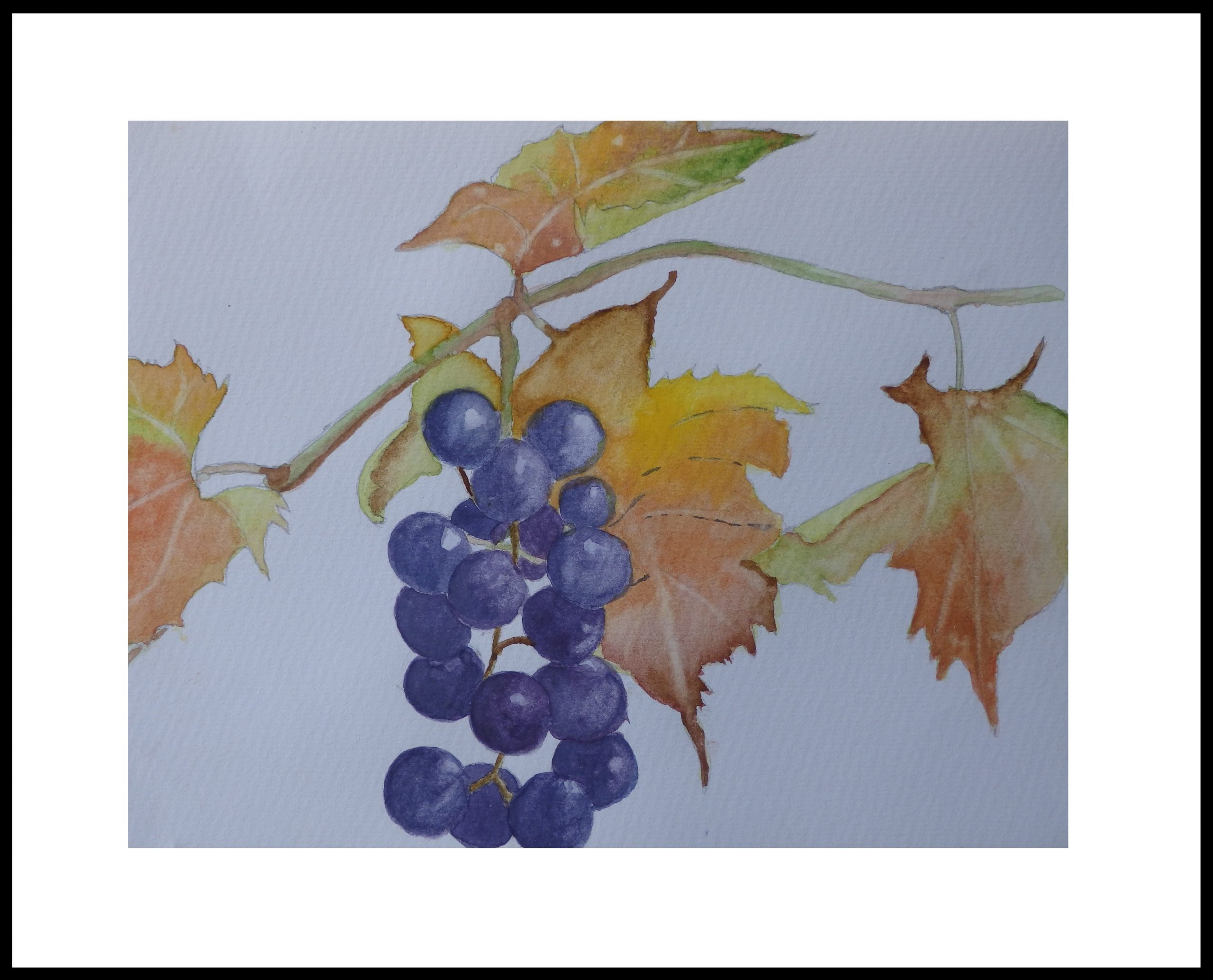 11-last-of-the-summer-wine-scaled