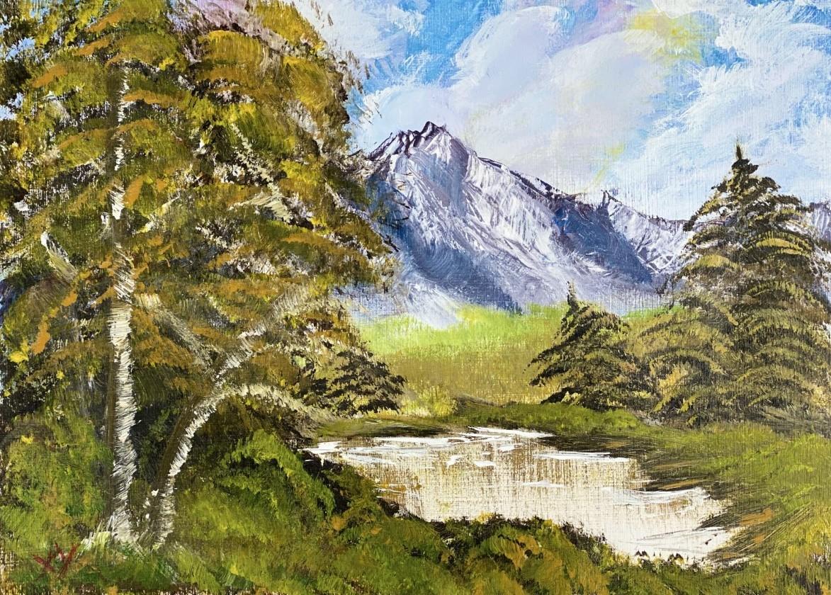 19-mountain-view