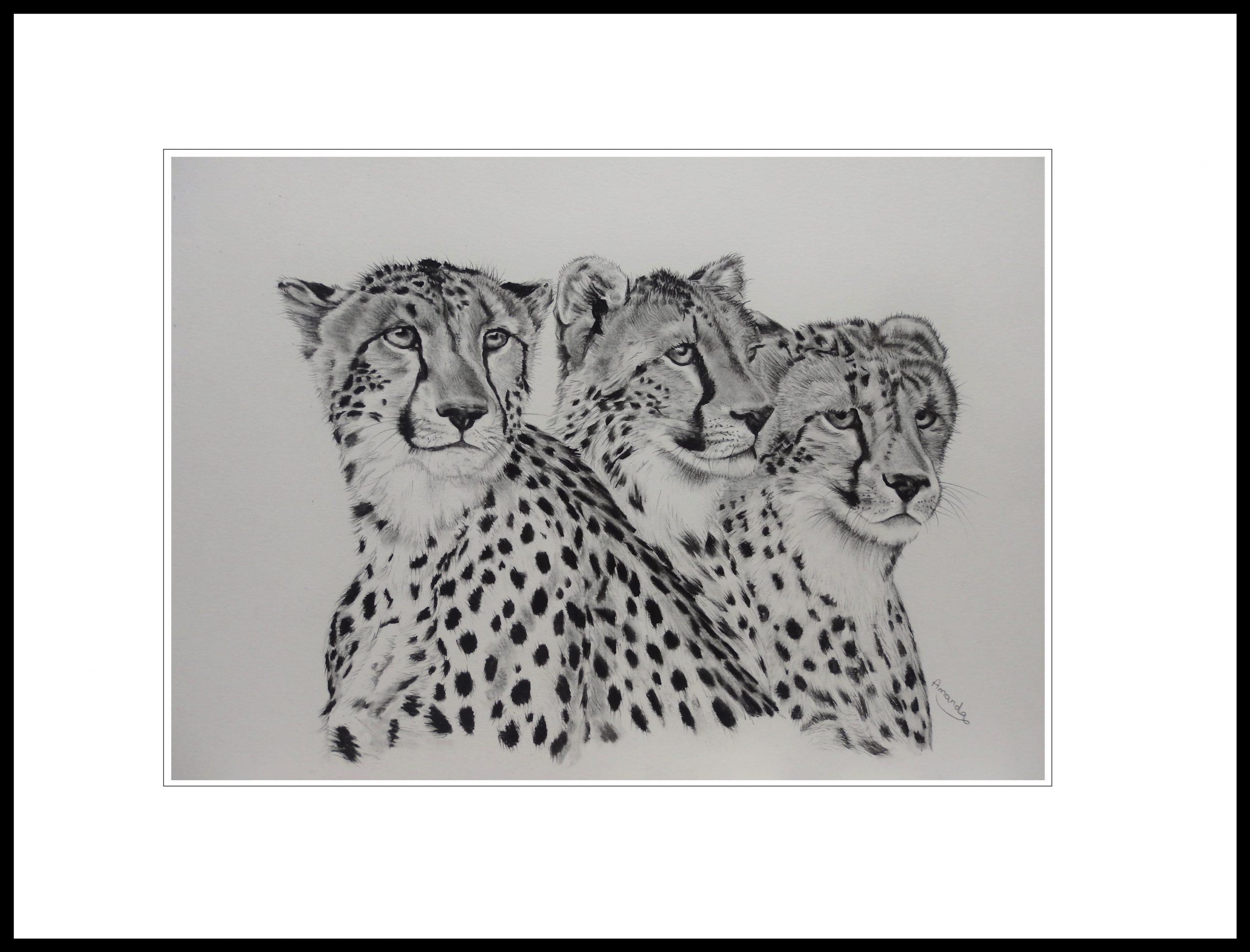 three-brothers