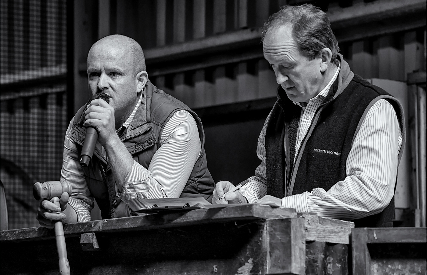 15. The Auctioneers at Penderyn Sheep Market