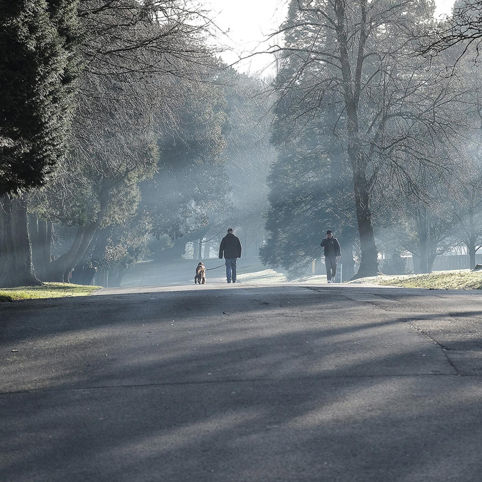 a-frosty-january-morning-by-john-white