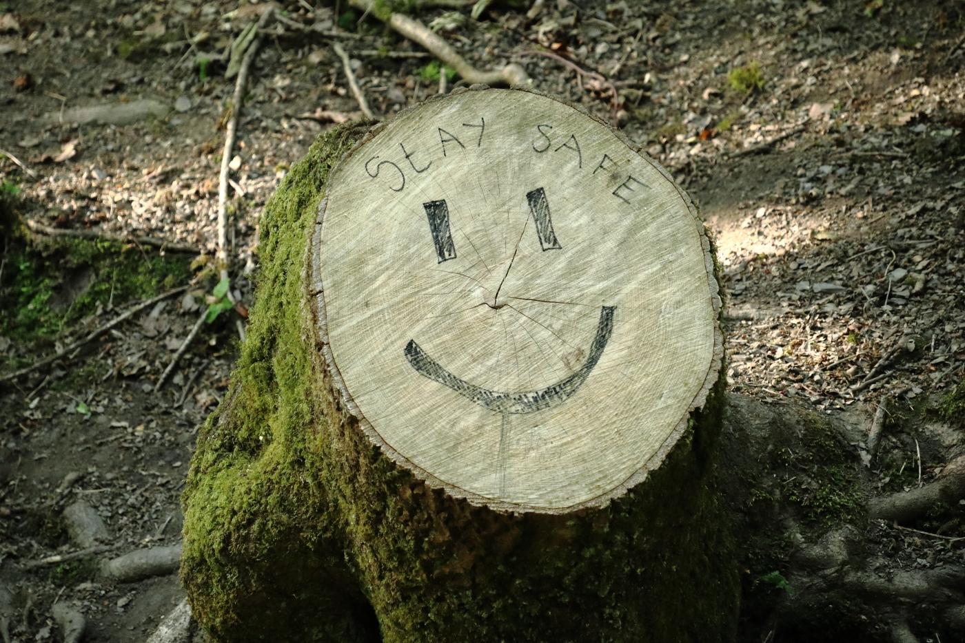 smile-les-davies-