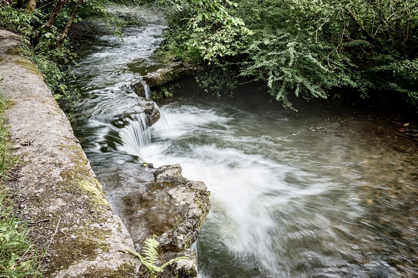 stream-john-white-