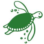 turtle-image
